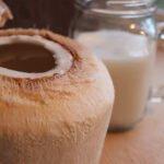 Kefir di Cocco Dove Comprarlo