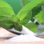 Semi di Stevia : dove li posso comprare